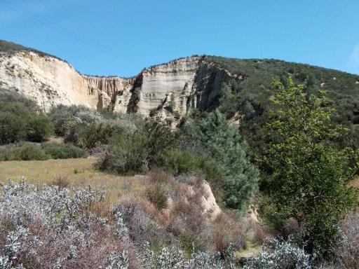 Hidden gems in Grassy Canyon.